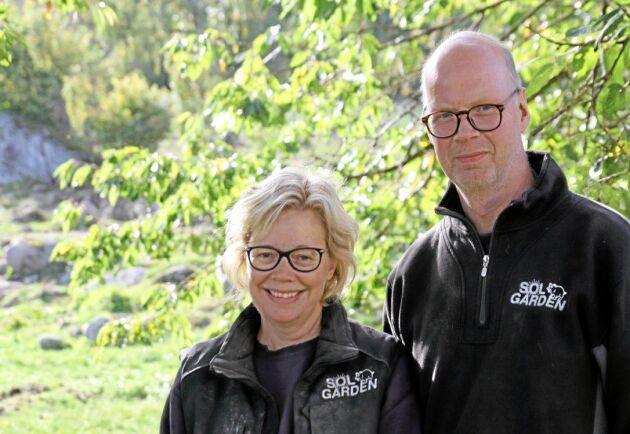 """Eva och Mikael Larsson driver Solgården. """"Vi diskuterar mycket om vi ska stänga av hela gården med färister på vägarna så att vildsvinen inte kan komma in alls."""" Arkivbild."""