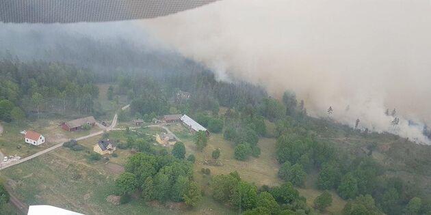 Lantbrukaren räddade hela byn - från luften