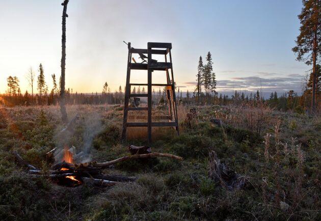 En månad före jaktstart meddelades, utan motivering, att 49 licensområden inte får någon tilldelning alls.
