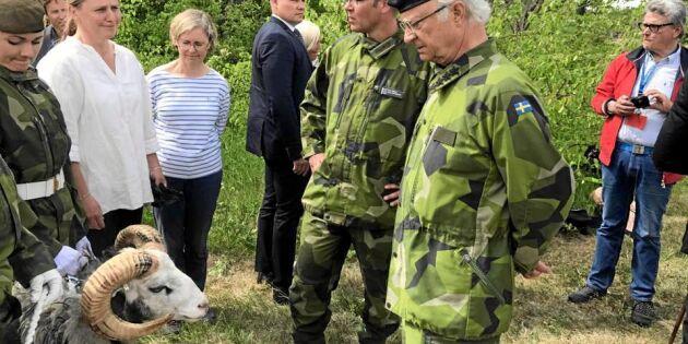 Baggen Harald har ryckt in i militären – här stjäl han den kungliga showen!