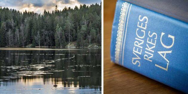 Ny studie ska förtydliga rättsläget för skogen