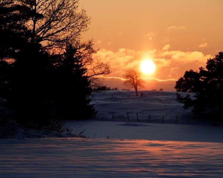 land_artikel_alska_vintern_vintersol