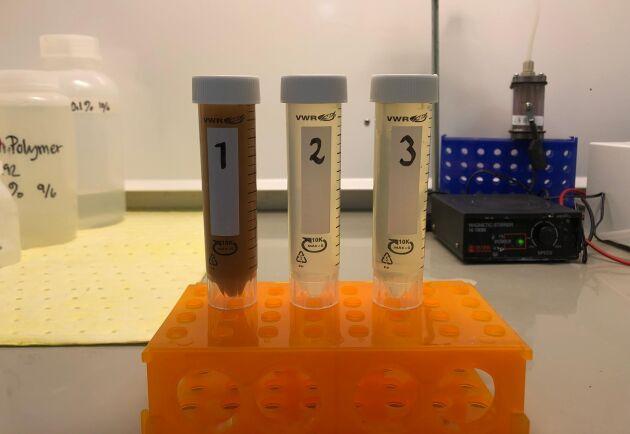 Proverna visar vattenkvalitén från början (1) till slut (3) från vattenreningsförsök där vatten från kassodling av fisk renats med elektrokoagulationsteknik där även lösta näringsämnen som fosfor tas bort.