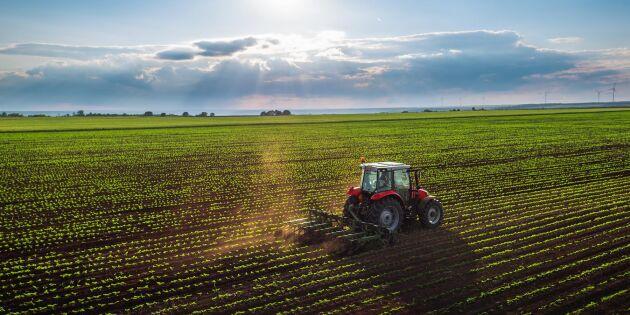 EU-rapport: Så ser jordbruket ut 2040