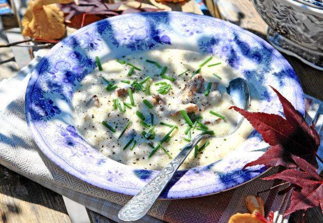 Godaste svampsoppan mixar du med palsternacka.