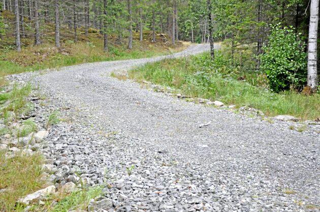 Att anlägga skogsbilväg är långsiktigt lönsamt även om investeringen är stor, konstaterar Erik Sandberg.