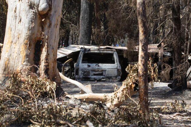 Brandskador i Noosa Shire, Queensland, på måndagen. Foto: Rob Maccoll/AAP/AP/TT