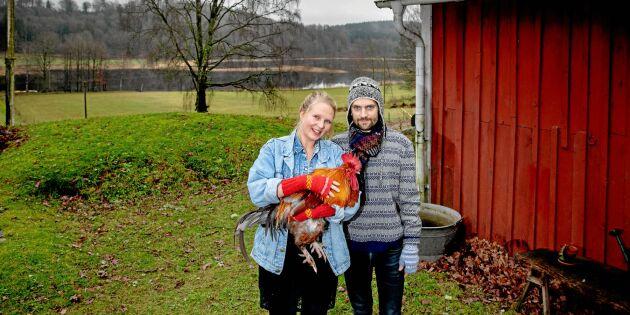 Lisa och Henrik förverkligade drömmen: Lämnade stan för gård på landet