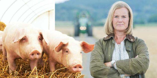 """Hotet mot maten – """"ett område regeringen blundar för"""""""