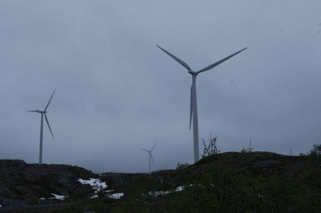 Det ser mörkt ut för svensk vindkraft när priserna för elcertifikaten når bottennivåer.