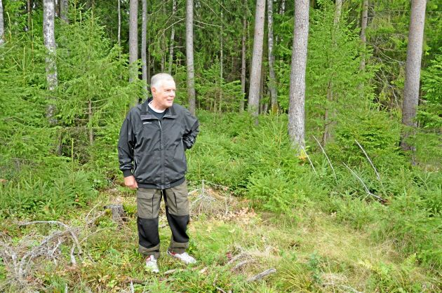 """Rolf Olsson lever för sin tätortsnära skog utanför Åmål i dalsland. """"Hela Åmål brukar komma hit"""", säger Rolf som gärna pratar lite med folk som är ute och promenerar."""