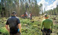 Sveaskog klarar leveranserna till industrin i norr