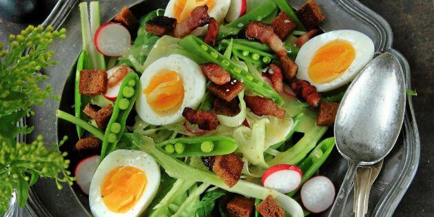 Vacker fänkålssallad med ägg och rökt sidfläsk