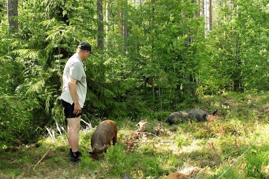 Land.se om Thorsten Laxvik som vill bygga miljonprogram för landsbygden. Foto: Annika Boltegård, privat