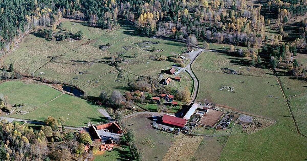 Stockholms sista mjölkgård såld