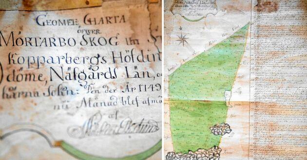 Fint bevarad skogsvårdskarta från 1749 över skogen i Mörtarbo.