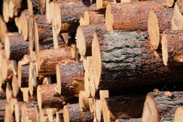 Mellanskog visar upp ett starkt resultat för årets nio första månader.
