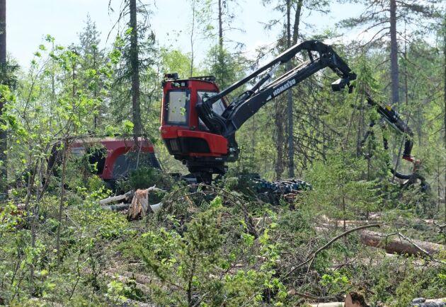 Kammarrätten ger Skogsstyrelsen fortsatt rätt att publicera avverkningsanmälningar.