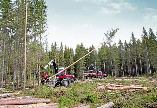 Statistik från Skogsstyrelsen visar att den totala avverkningsanmälda arealen i augusti i hela landet är den högsta på 13 år.