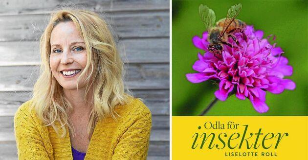 Liselotte Roll har ett hjärta som slår för insekterna.