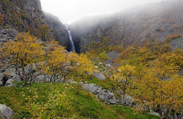 Vattenfallet Njupeskär i Fulufjällets nationalpark.