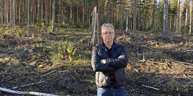 Skogsägaren: Staten tog makten över mina träd – för all framtid