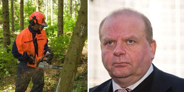 Röjstöd inte prioriterat för skogsägare
