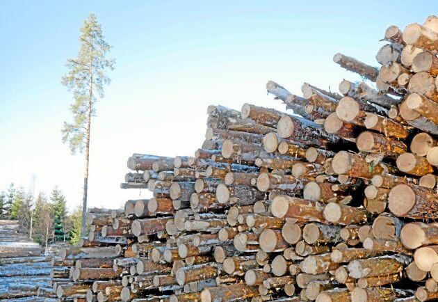 Priset på massaved stiger i Norge.