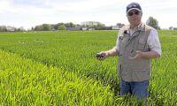 Staten och kapitalet leder jordbruket på dåliga vägar