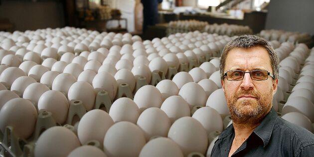 Konsumenter kan förvärra efter fågelinfluensa