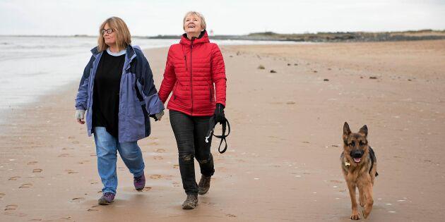 Ut och njut: 11 bevisade hälsoeffekter av promenader!