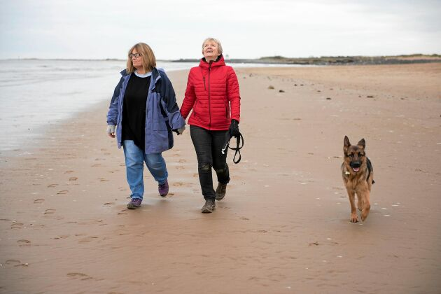 Stärkande promenader i friska luften är riktigt bra för hälsan.