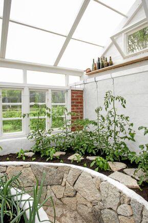 Kring de upphöjda växtbänkarna i det tredje och nyaste växthuset har Johnny murat ett brokigt stenmönster. Här slingrar sig tomatplantorna uppåt och vid takfönstret står vackra gamla flaskor på rad som dekoration.