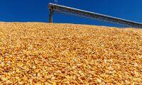 Ny prognos fick priserna på spannmål att falla
