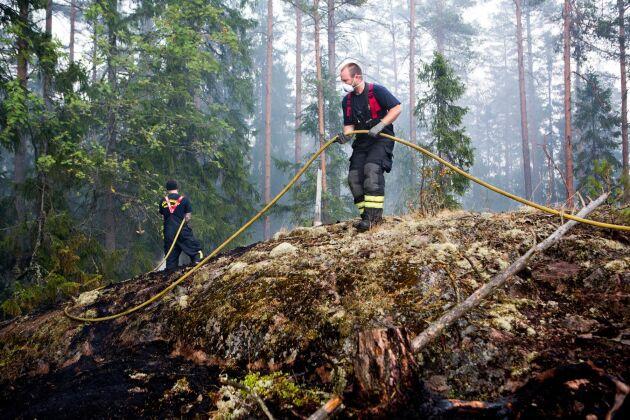 Västmanlandsbranden 2014 var en av de största skogsbränderna i Sveriges moderna historia. Under många veckor kämpade brandmän för att släcka branden som startade i samband med markberedning.