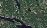 Skogsmark i Nordmalings kommun såld