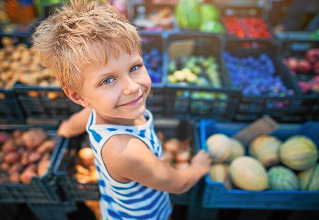 Välfyllda hyllor i matbutikerna är en självklarhet för de allra flesta av oss. Men vad händer vid en kris?