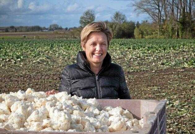 Blomkål är den vanligaste grönsaken som odlas runt Roeselare, enligt Ingros VD Hilde Dhuyvetter.