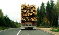 Fortsatt högtryck för skogsindustrin