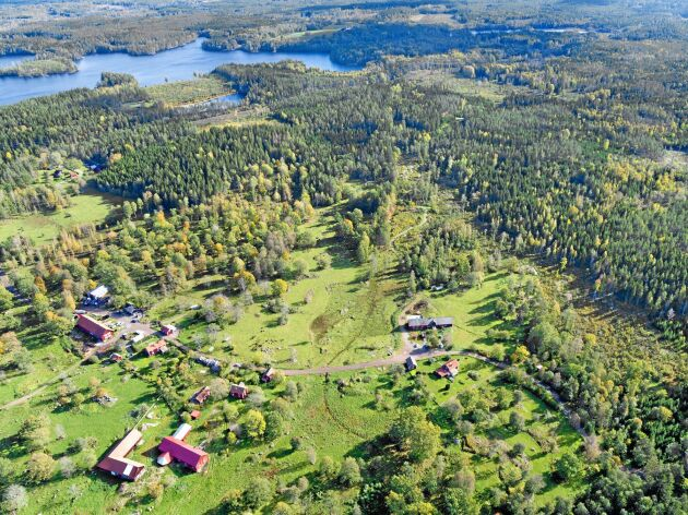 – Skiften är 1,66 hektar i snitt. Så vår SAM-ansökan är säkert Sveriges värsta, konstaterar Leif Franzén.
