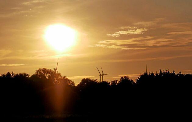 Vindkraftstorn i trä kan byggas högre än konventionella ståltorn.