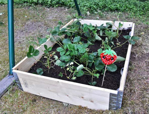 parlad-plantskylt