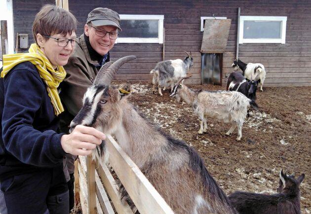 """""""De investeringar som vi har gjort får vi nog aldrig igen helt och hållet"""", konstaterar Jaana Alamäki Enström och Knut Enström. Ändå har de aldrig ångrat att de satsade på sitt lantbruksföretag."""