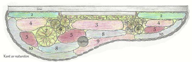 Ritning att plantera efter. Helena Carlssons torprabatt har mjuka former och växter i olika höjd. Varje växt är utmärkt med en siffra på ritningen. Komplettera gärna med pionen 'Sarah Bernhardt' och lökväxter för vårblomning.