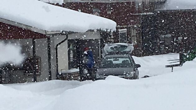 Många trotsade snöovädret för gårdens mjölk.