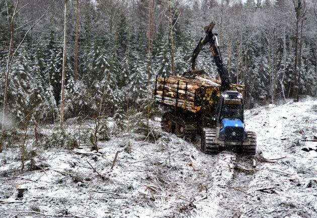 I Sverige är skogen arbetsgivare, koldioxidsänka och en självklar del i utvecklingen av en växande bioekonomi, skriver tre socialdemokrater.