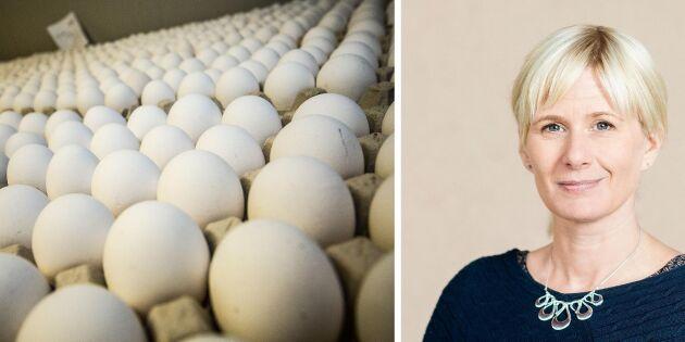 Livsmedelsverket: Oacceptabelt höga dioxinhalter i äggen