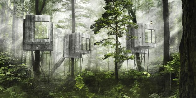 Närhet till naturen ska locka trädkojeälskare