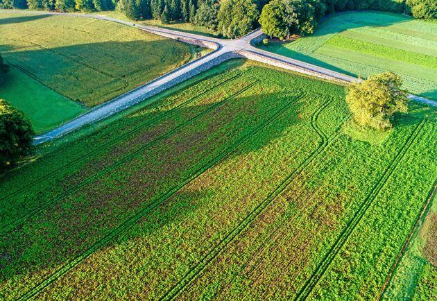 Debattören uppmanar kommuner att bromsa trenden med exploatering av åkermark.