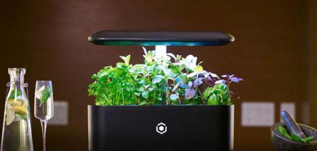 En liten och smidig möbel där du kan odla färska örter och sallad. Ava Byte heter modellen.